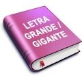Letra Grande / Gigante